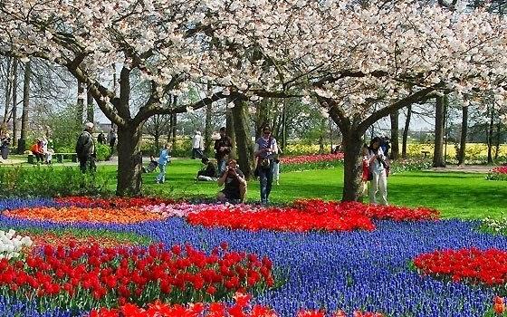 Jardim Keukenhof de Amsterdam na Holanda