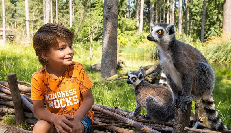 Zoológicos na Holanda
