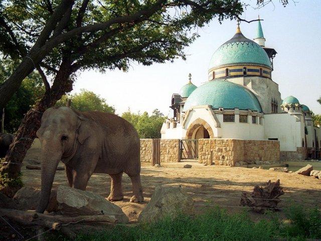 Zoológico de Budapeste   Hungria